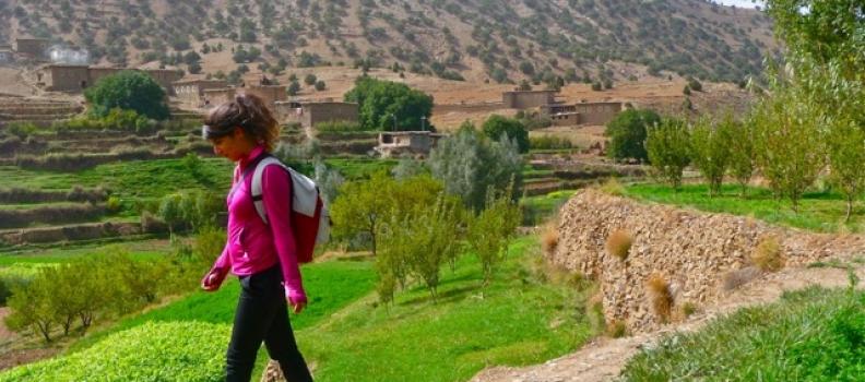 Villes Impériales et le Grand Sud Marocain 8 jours – 7 nuits .