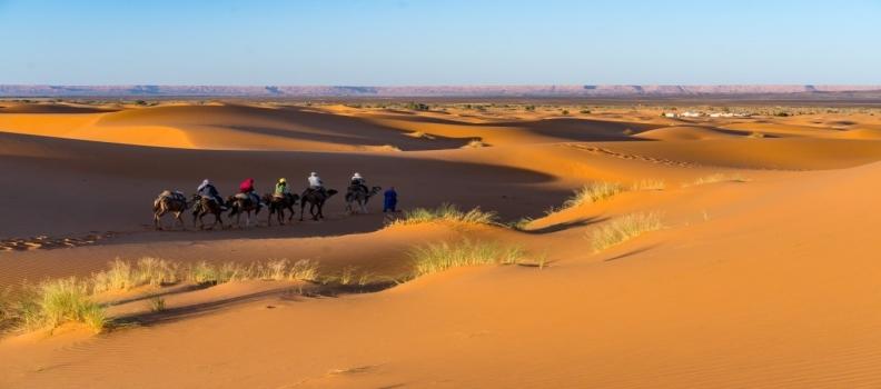 Combiné Atlas et Sahara